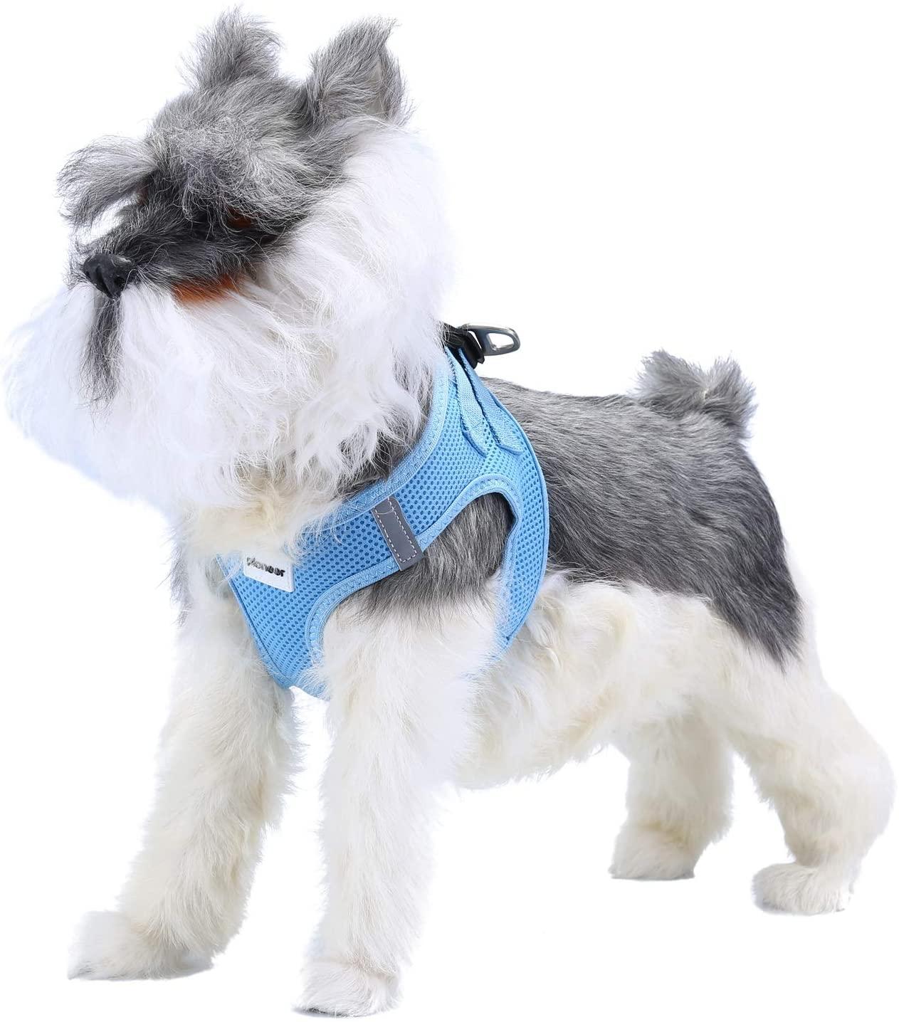 #5 Petcomer - Arnés para Perro Pequeño Suave y Acolchado