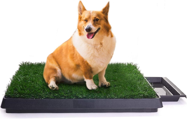 #5 Sailnovo - Inodoro para Perro de Césped Artificial