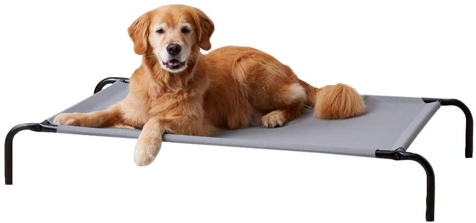 Amazon Basics - Cama Para Perros Elevada